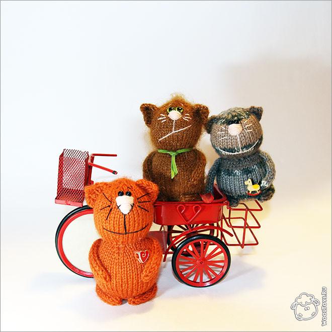 Коты на велосипеде